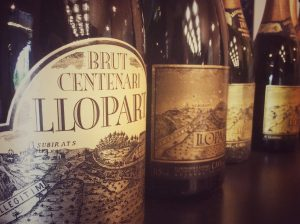 Llopart wines at the Bodega