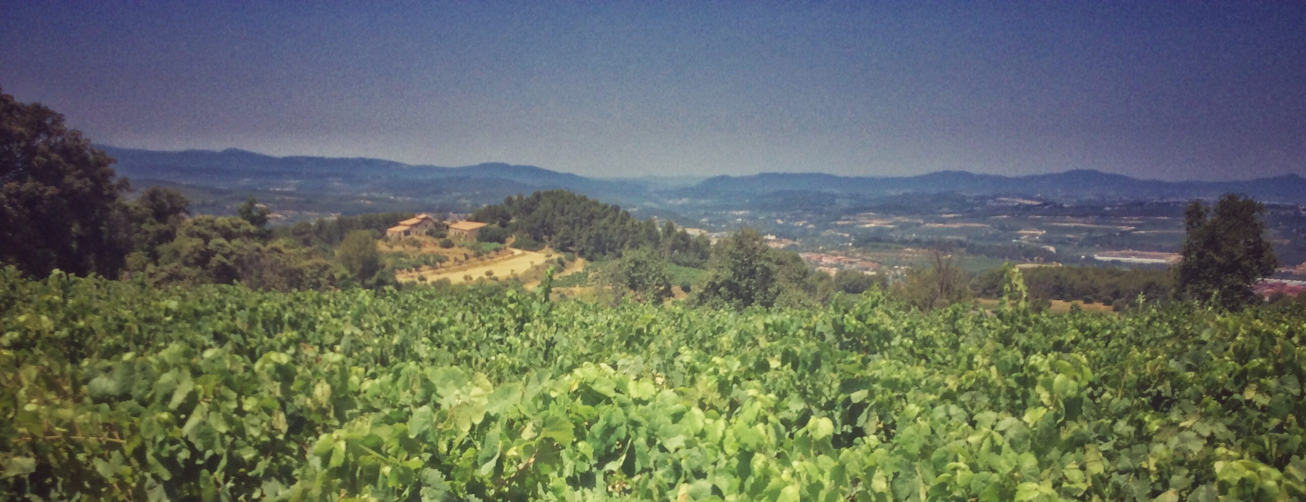 day trip from Barcelona to Penedes