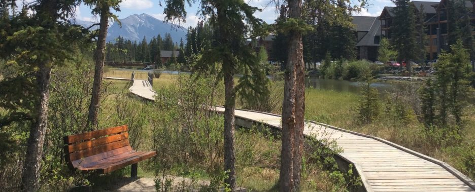 Boardwalk in canmore, AB