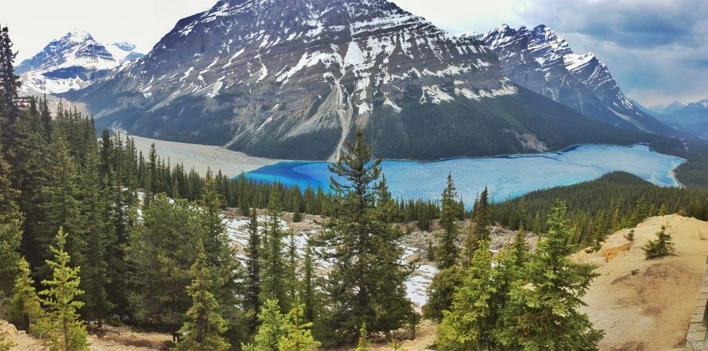 Peyto Lake on Icefields Parkway, Canada