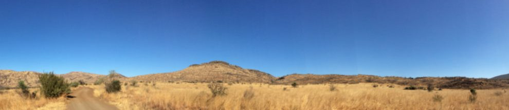 FIrst timers itinerary to Pilanesberg
