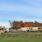 RV park Woolastock park in New Brunswick