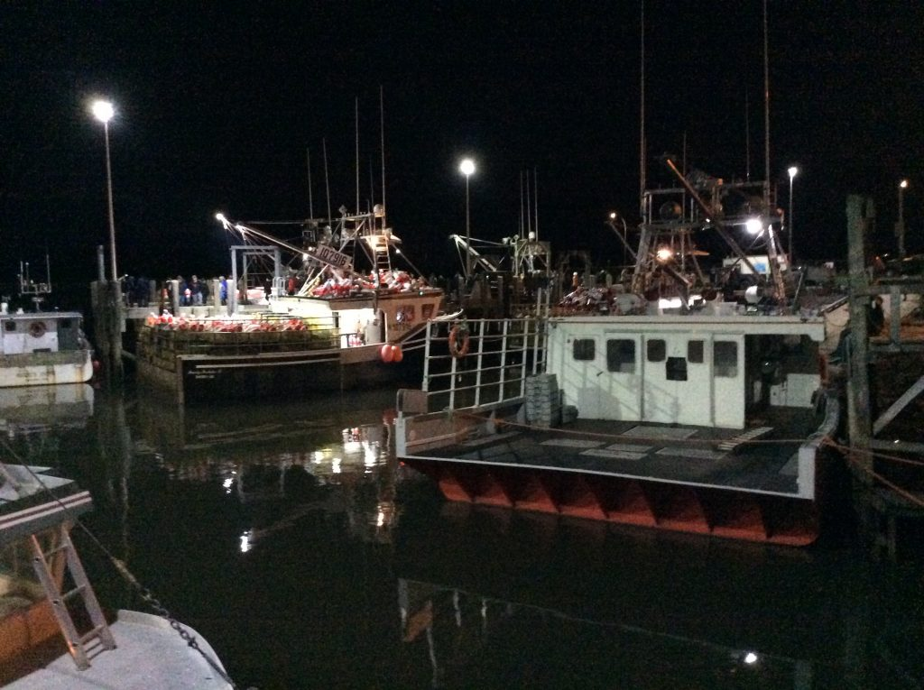 Lobster fisher boats in Alma, NB just before the 2019 fleet launch. Un expected Canada bucket list item for us