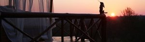 Pezulu_where to stay near Kruger National Park_feature